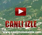 Düzköy Canli İzle Trabzon Mobese