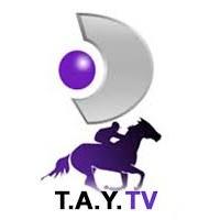 Tay Tv Frekansı
